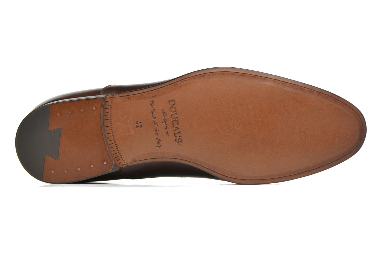 Snörade skor Doucal's SEBASTIANO Lione Brun bild från ovan