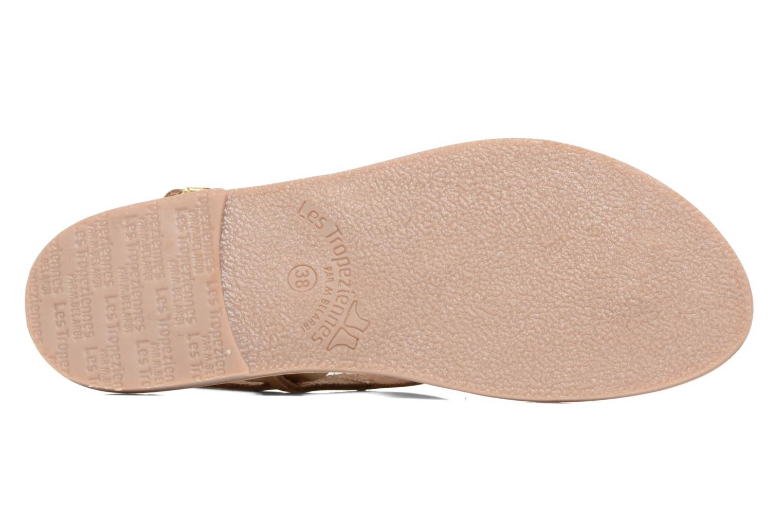 Sandales et nu-pieds Les Tropéziennes par M Belarbi Baccara Or et bronze vue haut