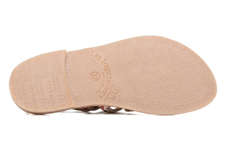 Sandales et nu-pieds Les Tropéziennes par M Belarbi Manga Multicolore vue haut