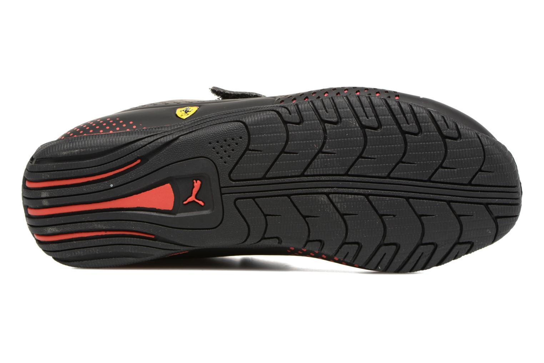 Drift Cat 5 Evo SF V PS black-rosso corsa
