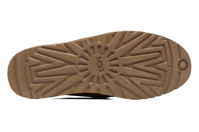 Chaussures à lacets UGG M Maksim Marron vue haut