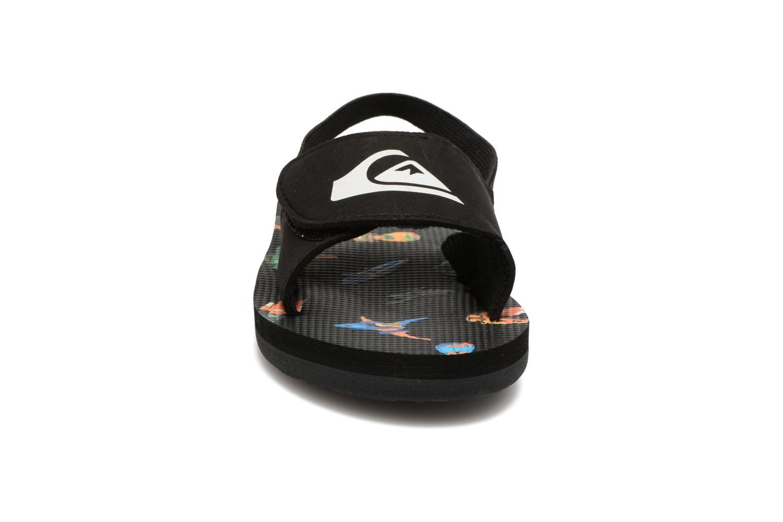 Tongs Quiksilver Molokai TD Noir vue portées chaussures