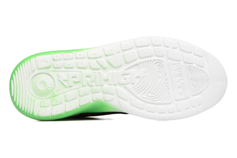 Sneakers Primigi Polo Azzurro immagine dall'alto