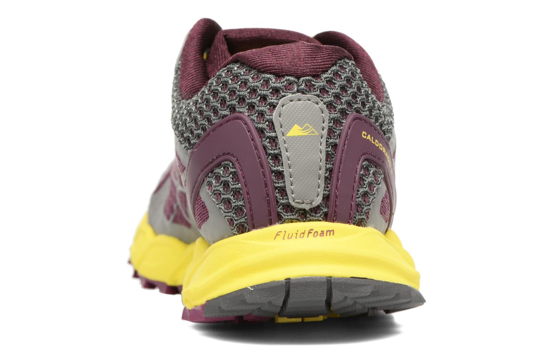 Chaussures de sport Columbia Caldorado II W Violet vue droite