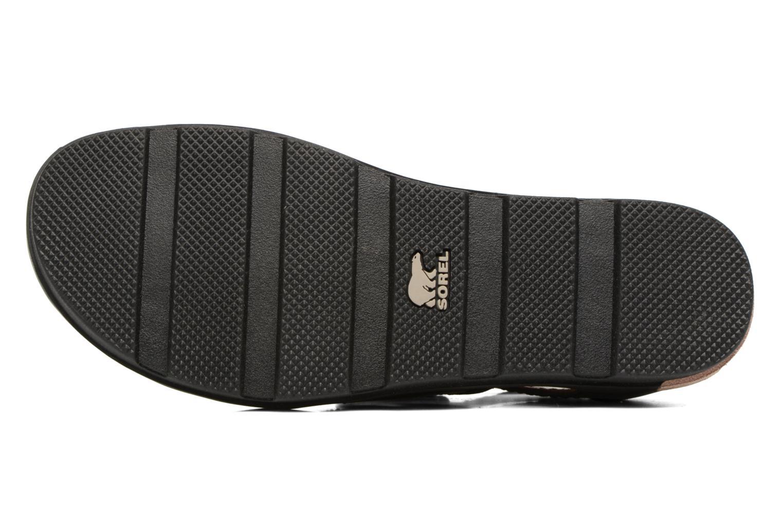 Sandalen Sorel Torpeda lace II Zwart boven