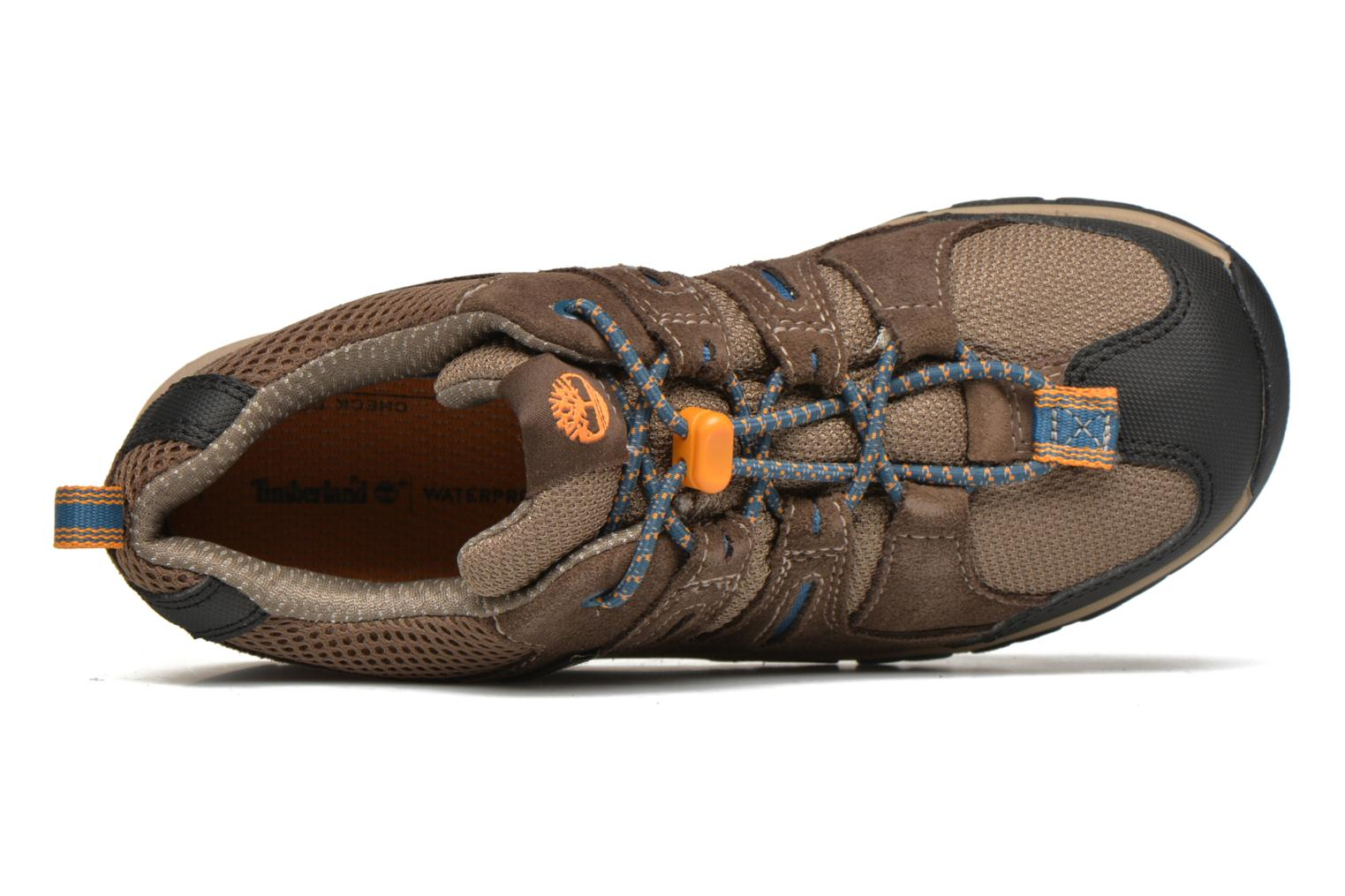 Trainers Timberland Zip Trail GTX Ox Brown view from the left