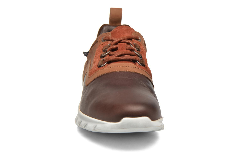 Baskets TBS Askania Marron vue portées chaussures