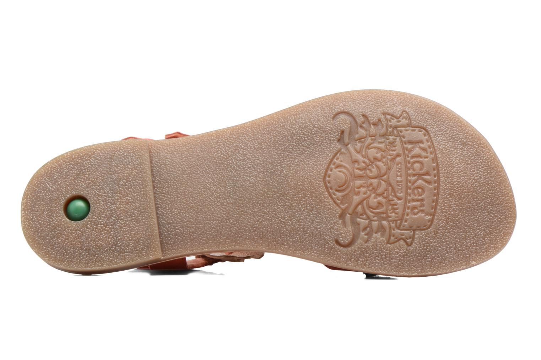 Sandales et nu-pieds Kickers Dixie Rose vue haut