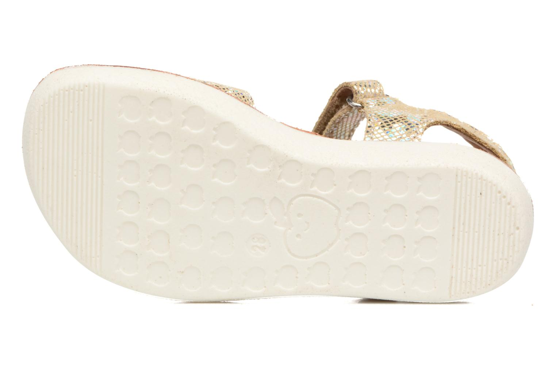 Sandales et nu-pieds Shoo Pom Goa Sandal Girl Or et bronze vue haut