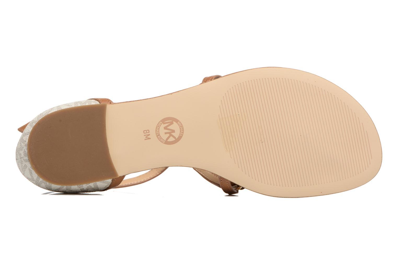 Sandales et nu-pieds Michael Michael Kors Terri Flat Sandal Marron vue haut