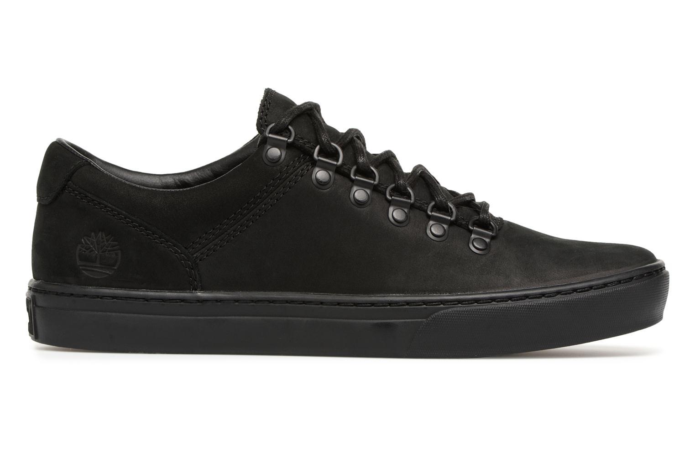 Sneaker Timberland Adv 2.0 Cupsole Alpine Ox schwarz ansicht von hinten