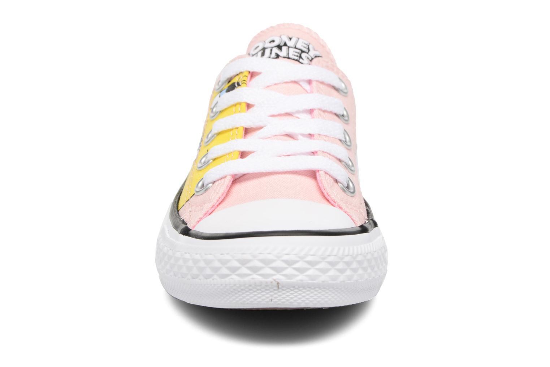 Baskets Converse Chuck Taylor All Star Ox Vapor Multicolore vue portées chaussures