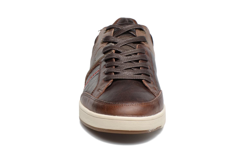 Beyers Dark Brown
