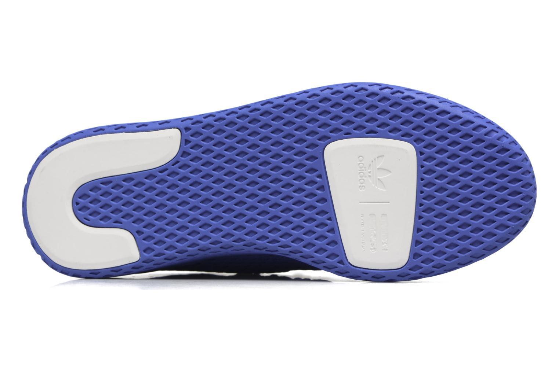 Sneakers Adidas Originals Pharrell Williams Tennis Hu J Azzurro immagine dall'alto