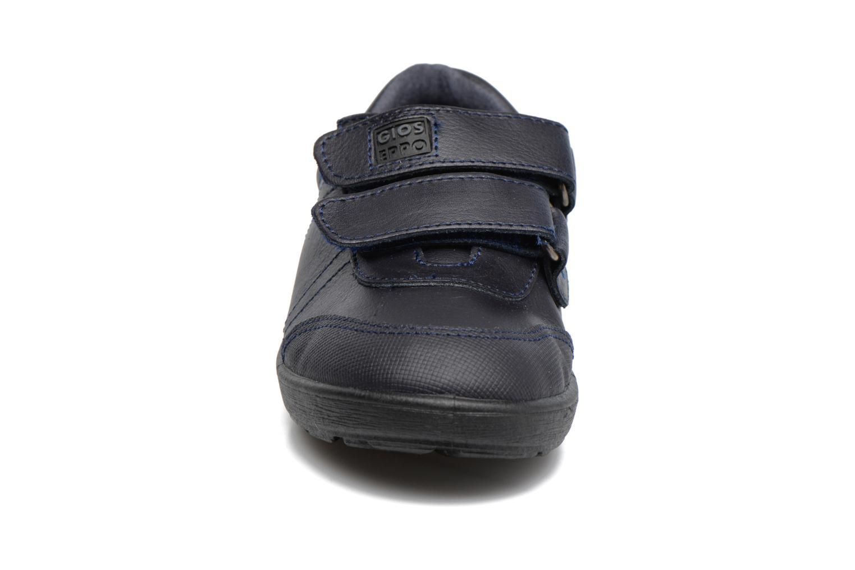 Zapatos con velcro Gioseppo NEWTON Azul vista del modelo