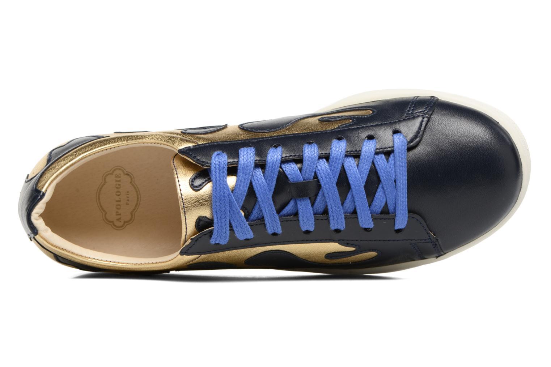 Gloup V6 Blue/Gold