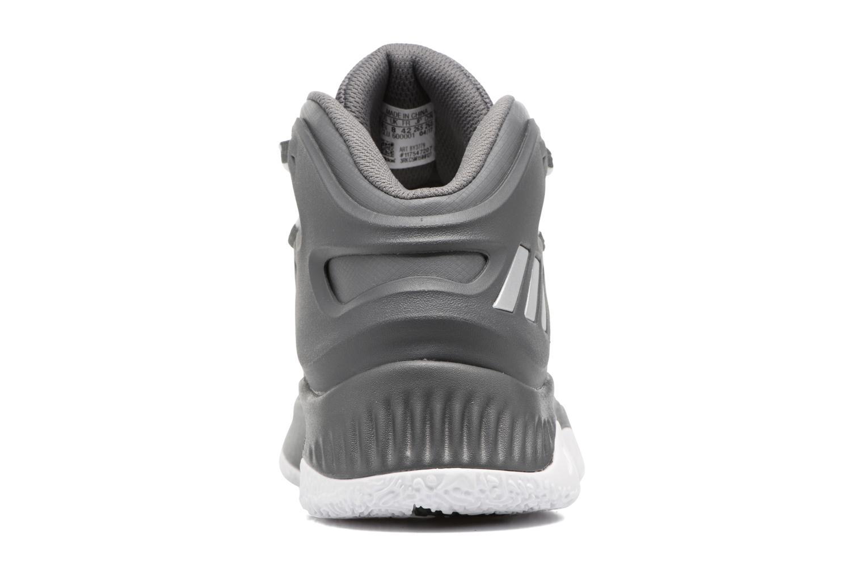 Chaussures de sport Adidas Performance Explosive Bounce Gris vue droite
