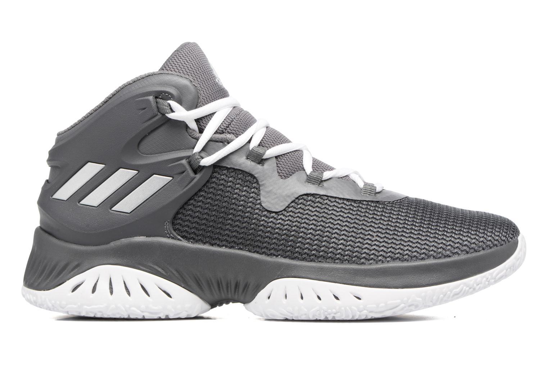 Chaussures de sport Adidas Performance Explosive Bounce Gris vue derrière