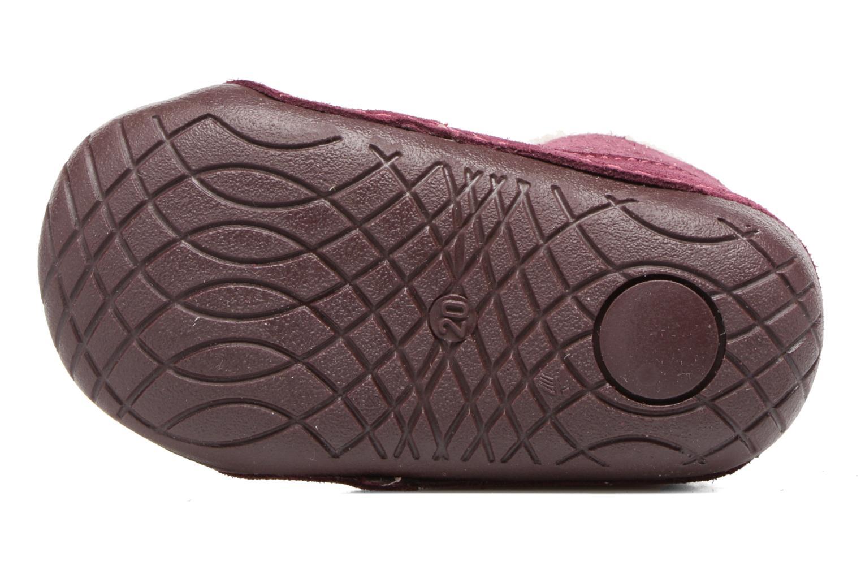 Bottines et boots Primigi Vitale Bordeaux vue haut