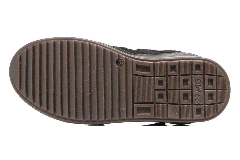 Sneakers Primigi Gio Azzurro immagine dall'alto