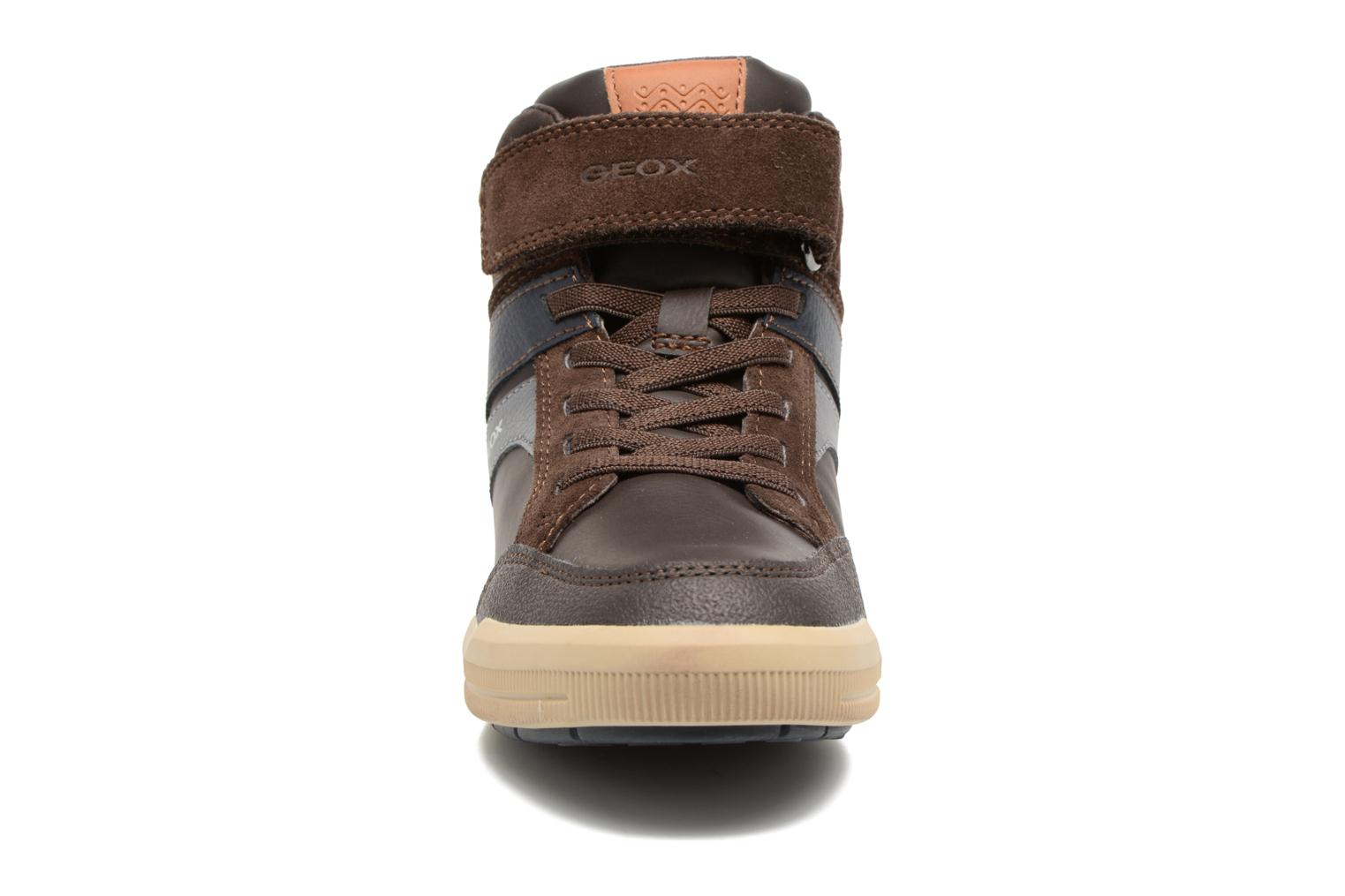 J Arzach B. C  J744AC Brown/navy
