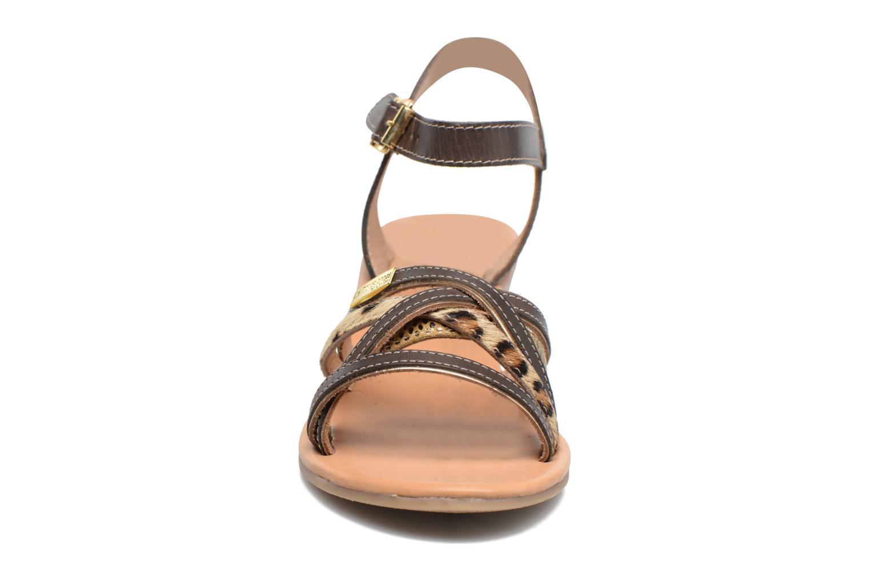 Sandales et nu-pieds Les Tropéziennes par M Belarbi Boreal Marron vue portées chaussures