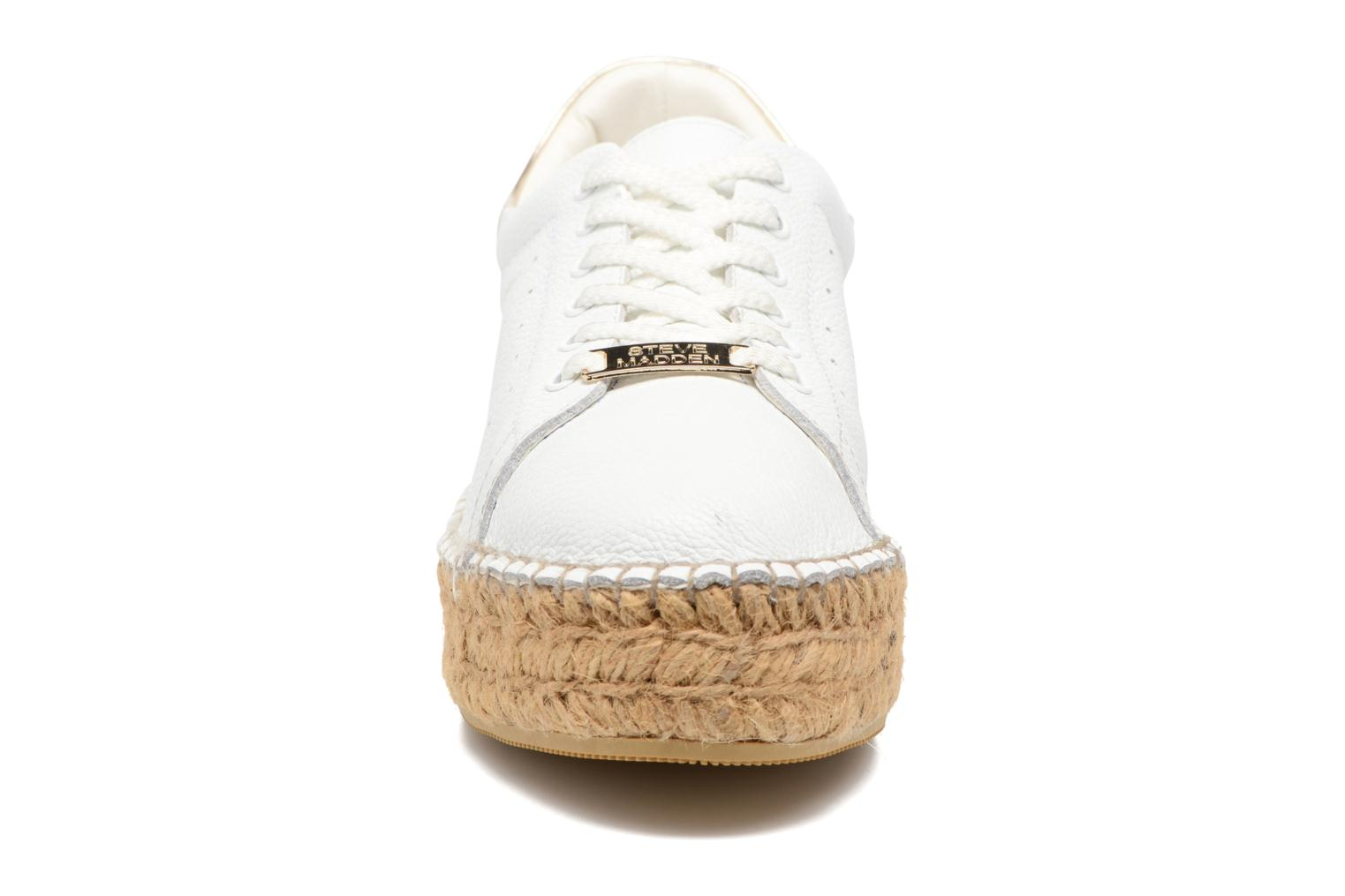 Trainers Steve Madden Pace White model view
