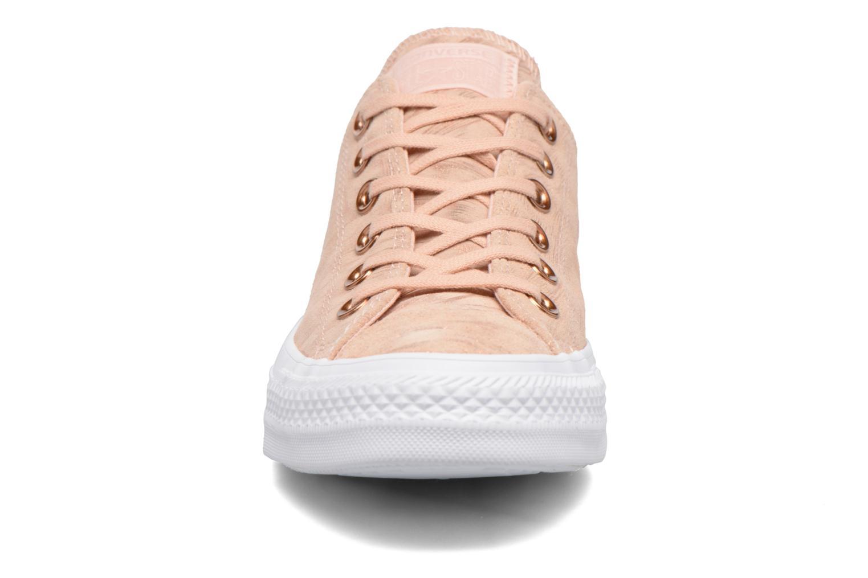 Sneaker Converse Chuck Taylor All Star Shimmer Suede Ox rosa schuhe getragen