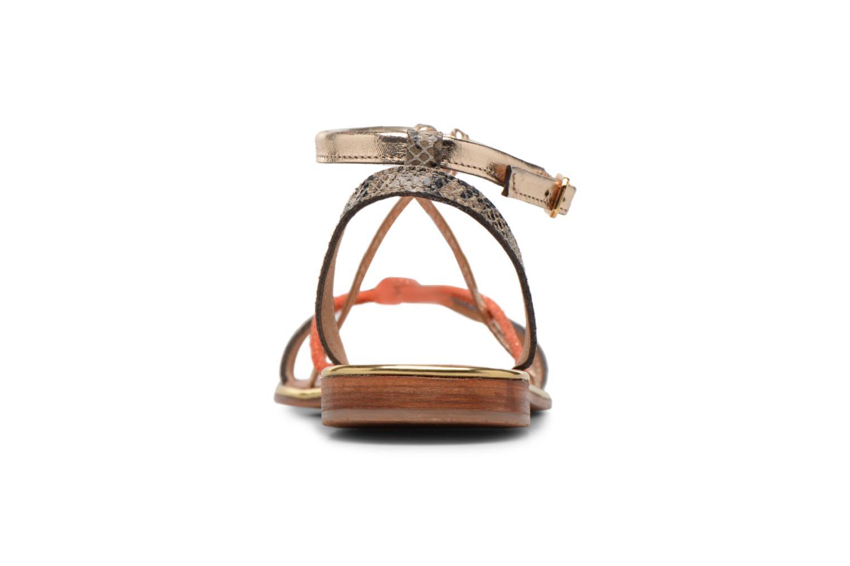 Sandales et nu-pieds Les Tropéziennes par M Belarbi Hirondel Or et bronze vue droite
