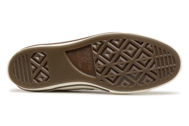 Papyrus Egret Converse Feet Ox Chocolate Star Tropical One Dark qAnXA8