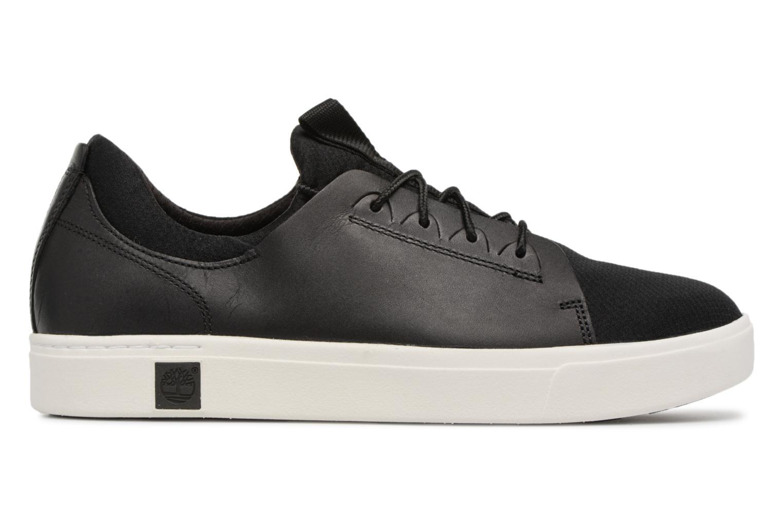 Sneaker Timberland Amherst Lthr LTT Sneaker schwarz ansicht von hinten
