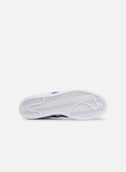 Baskets adidas originals Superstar Blanc vue haut