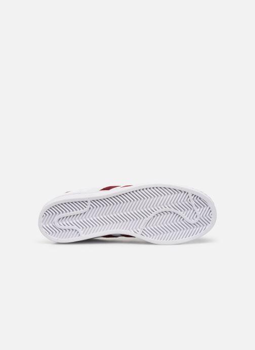 Sneakers adidas originals Superstar Vit bild från ovan