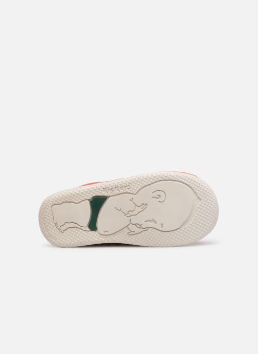 Zapatos con cordones Kickers BILLY B Rosa vista de arriba