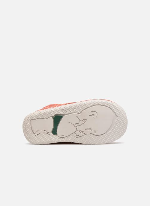 Chaussures à lacets Kickers BILLY B Rose vue haut