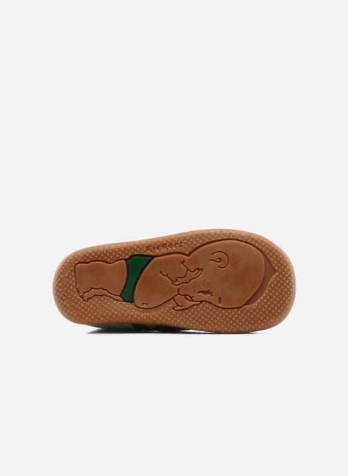 Stivaletti e tronchetti Kickers Bonbon Marrone immagine dall'alto