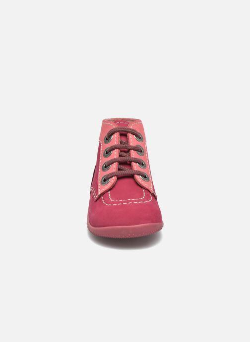 Stivaletti e tronchetti Kickers Bonbon Rosa modello indossato