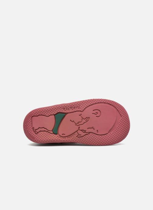 Stivaletti e tronchetti Kickers Bonbon Rosa immagine dall'alto
