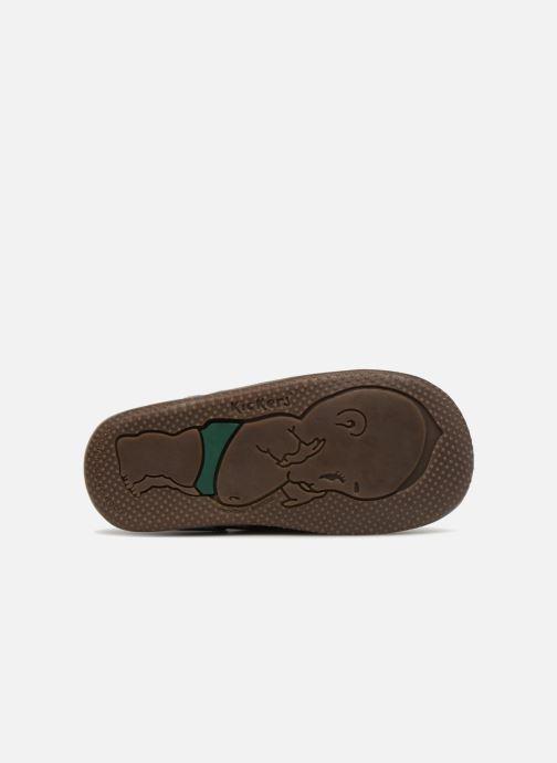 Bottines et boots Kickers Bonbon Marron vue haut