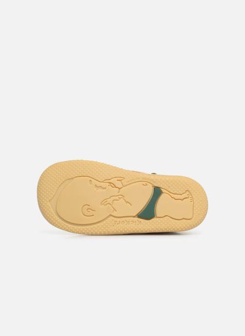 Bottines et boots Kickers Bonbon Jaune vue haut