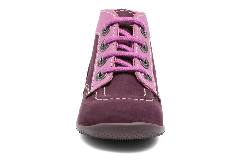 Ankelstøvler Kickers Bonbon Lilla se skoene på