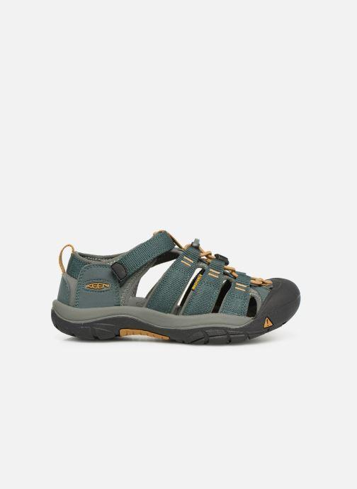 Sandales et nu-pieds Keen Newport H2 Vert vue derrière