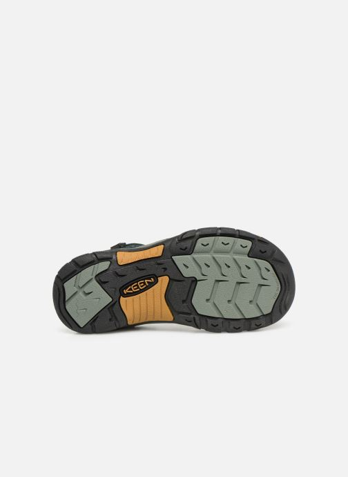 Sandales et nu-pieds Keen Newport H2 Vert vue haut