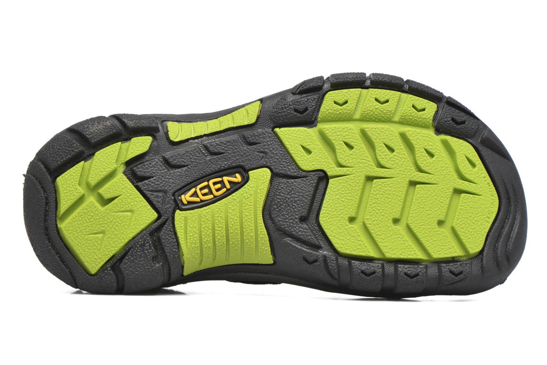 Sandaler Keen Newport H2 Svart bild från ovan