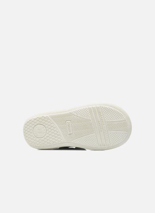 Sneakers Primigi Allen Azzurro immagine dall'alto