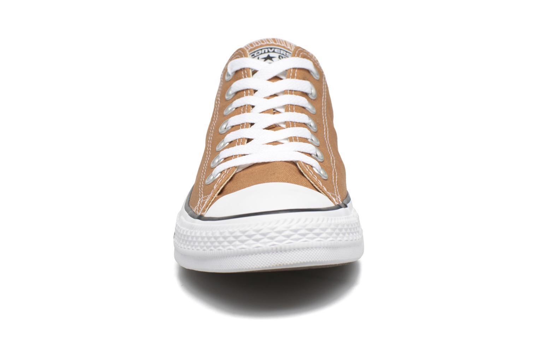 Sneakers Converse Chuck Taylor All Star Ox M Marrone modello indossato