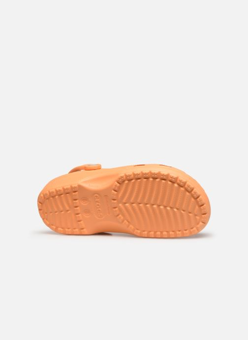 Mules & clogs Crocs Cayman F Orange view from above