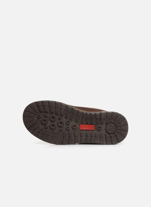Zapatos con velcro Primigi Aspy Marrón vista de arriba