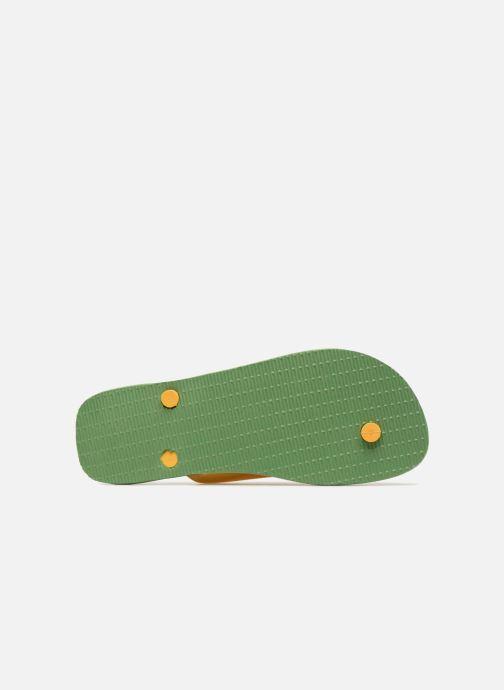 Slippers Havaianas Brazil Logo H Groen boven