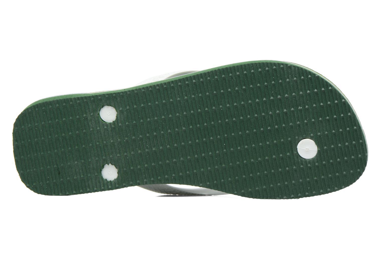Flip flops & klipklapper Havaianas Brasil Logo H Grøn se foroven